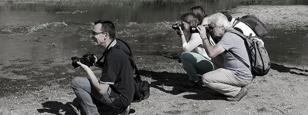 stages photos a la rochelle